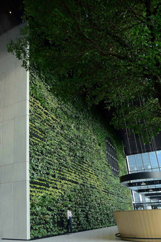 Zielona ściana w  Generation Park Y